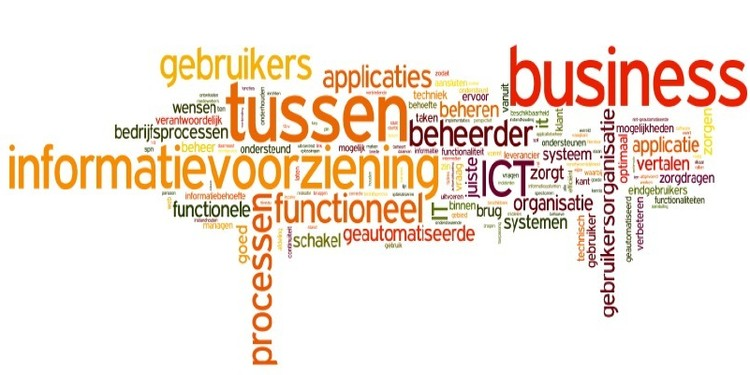 Het functioneel domein wordt volwassen - door Ton van den Hoogen Hetfunctioneeldomeinwordtvolwassen doorTonvandenHoogen1
